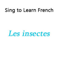 Les insectes – Insects